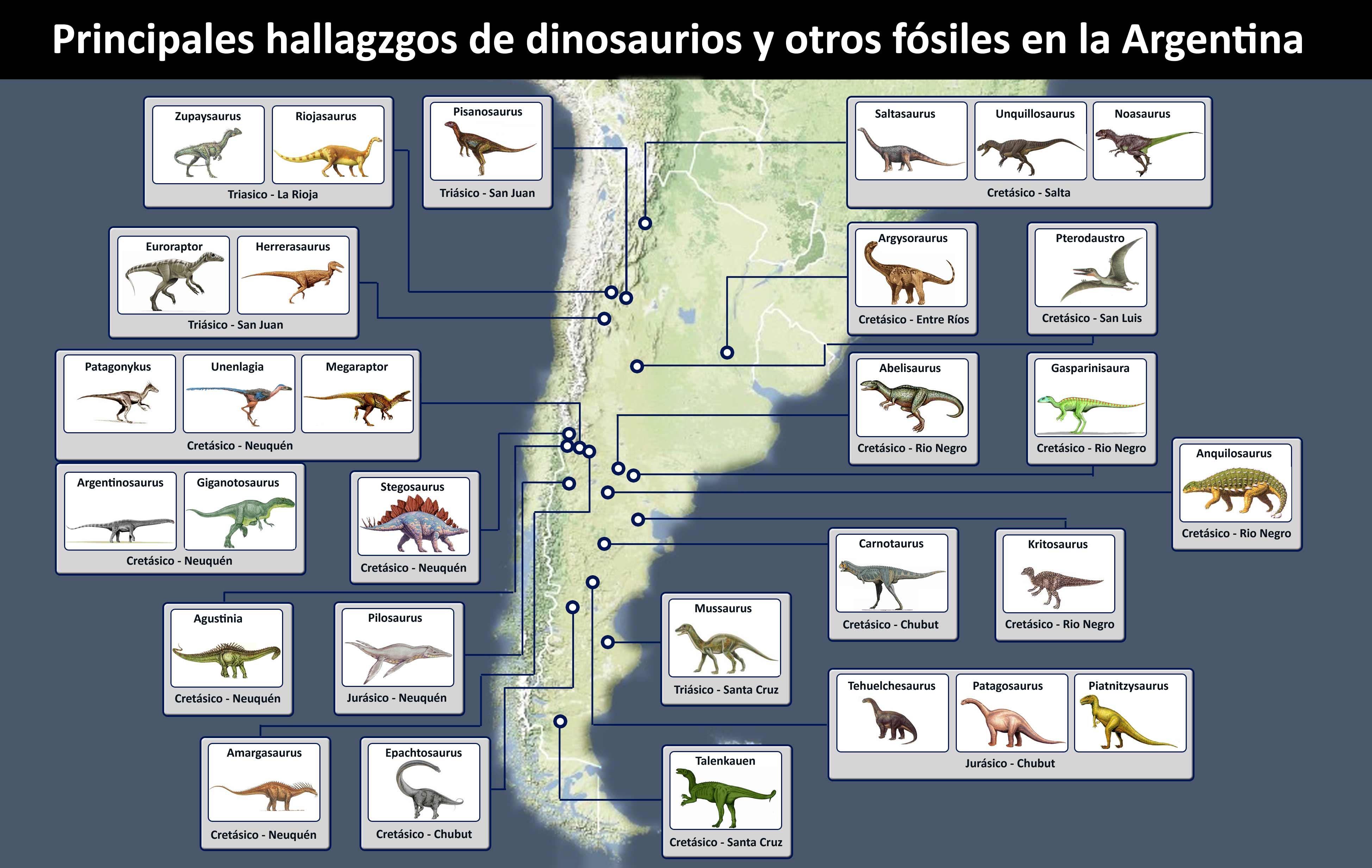 El Trabajo Del Paleont Logo Museos Vivos